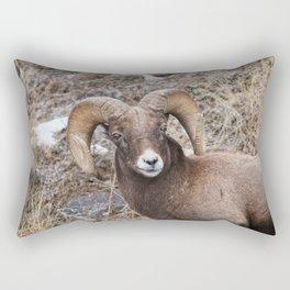Bighorn sheep closeup in Yellowstone National Park Rectangular Pillow
