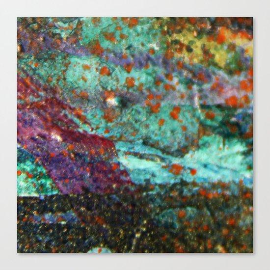 Micropic Canvas Print