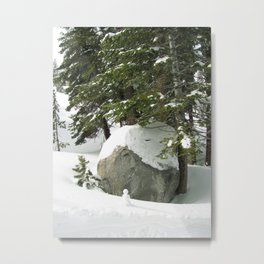 Tahoe 0375 Metal Print