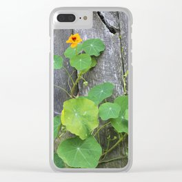 The Garden Wall Clear iPhone Case
