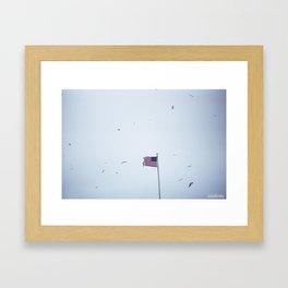 United States of America Framed Art Print