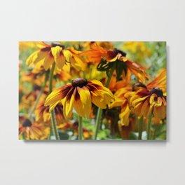 Flower meadow 128 Metal Print