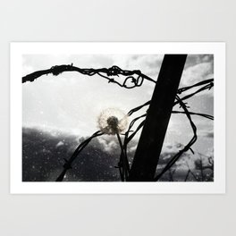 Barbed Wish Art Print