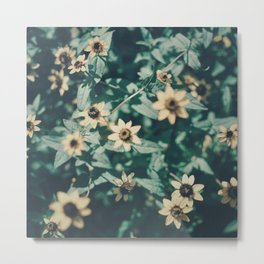 Flower Stars Metal Print