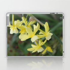 pretty light yellow garden flowers. floral photography. Laptop & iPad Skin