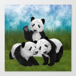 Panda Bear Cubs Love Canvas Print