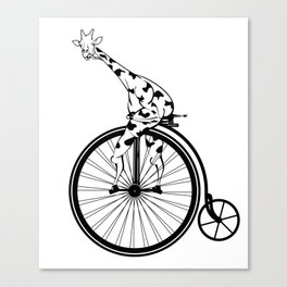 Giraffe Riding A Penny-Farthing Bicycle Canvas Print