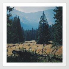 Beautiful nature of Koscieliska Valley in Poland Art Print