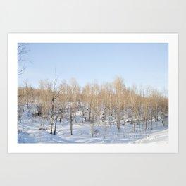 Snowfall and treetops Art Print