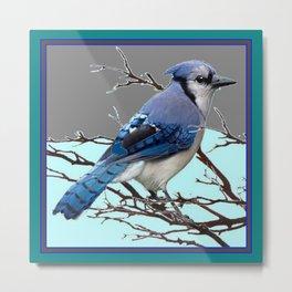 TEAL AMERICAN BLUE JAYS  GREY WINTER ART Metal Print