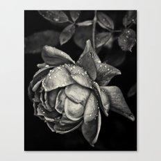 Elegy Canvas Print