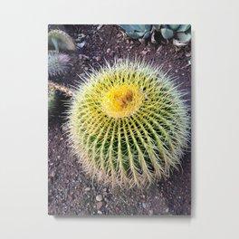 Yellow Cactus Ottoman Metal Print