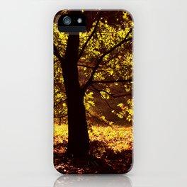 Autumn Gold iPhone Case