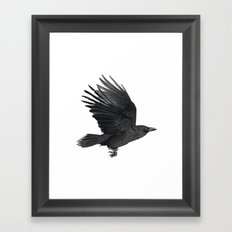 Flying crow Framed Art Print