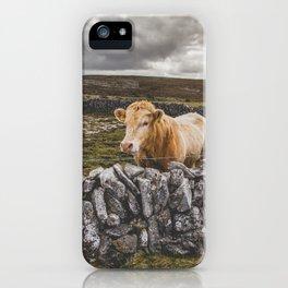 Burren Cow iPhone Case