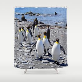 King Penguins on the Beach Shower Curtain