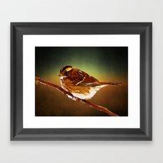 On a Branch Framed Art Print