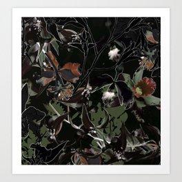 Exotic Botani Art Print