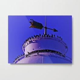 Lighthouse perch Metal Print