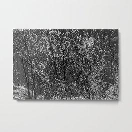 Icy Days NO8 Metal Print