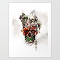 Broken Horn Art Print