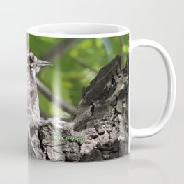 A Nuttal's Woodpecker Up a Tree Coffee Mug