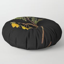 Sophora Tetraptera Mary Delany Floral Paper Collage Delicate Vintage Flowers Floor Pillow