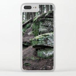 Algonquin Park, Ontario Clear iPhone Case
