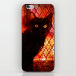 Staring Cat  iPhone Skin