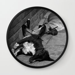 Greek Dogs Wall Clock
