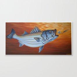Striper Season Canvas Print