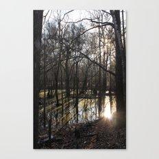 shadows & reflections Canvas Print