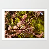 Pink flowery branches Art Print