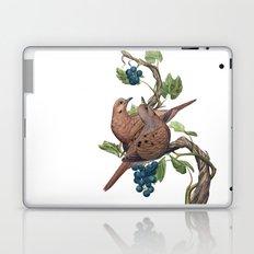Mourning Doves Laptop & iPad Skin
