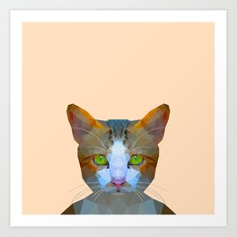 Cat new with background Art Print