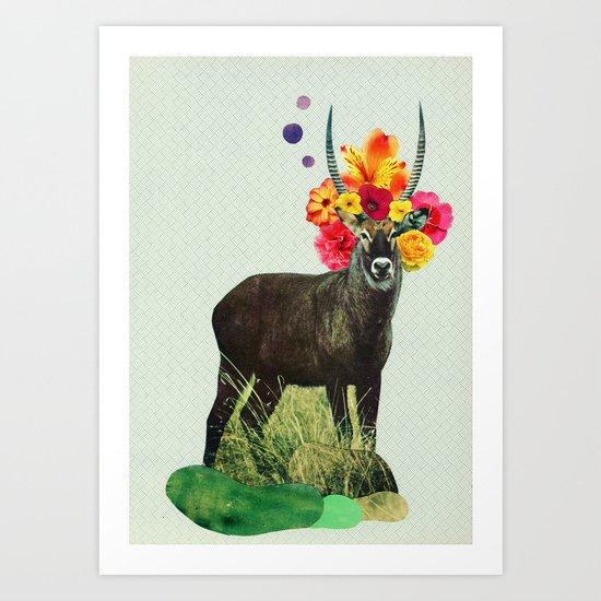 i've been searching for something i've never seen Art Print