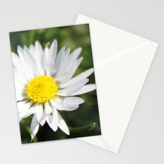 wild white daisy flowers. floral photography. Stationery Cards
