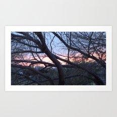 Arizona Sunset 2 Art Print