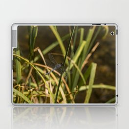 Dragonfly in the marsh Laptop & iPad Skin
