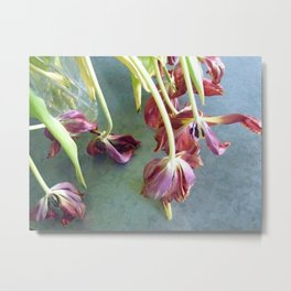 Tulips on Zinc-topped Coffee Table Metal Print