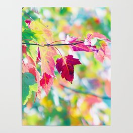 Autumn whispering Poster