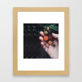 Psychadellic Berries Framed Art Print