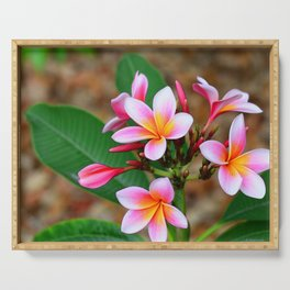 Plumeria Floral Art - Tropical Queen - Sharon Cummings Serving Tray