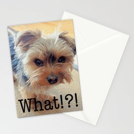 Yorkie | Dogs | Terrier | Pets | Humor | What!?! (with text) Stationery Cards