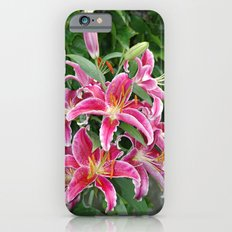 Star Lilies iPhone 6s Slim Case