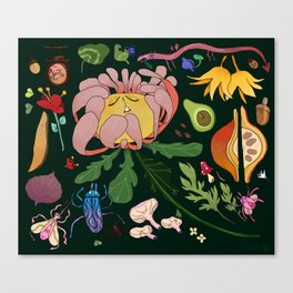 Magical flowers of Lamiak Canvas Print