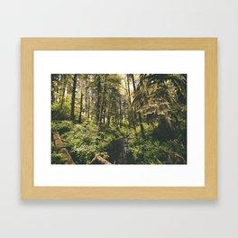 Forest XIV Framed Art Print
