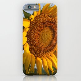 Sunflower Fields Forever - No. 7 iPhone Case
