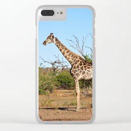 Giraffe. Clear iPhone Case