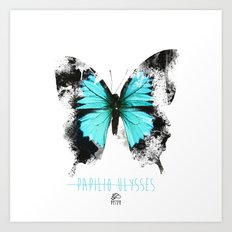 Butter flies - Papilio_Ulysses Art Print